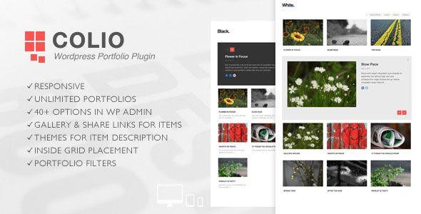 Colio-v2.3.2-Responsive-Portfolio-Wordpress-Plugin.jpg