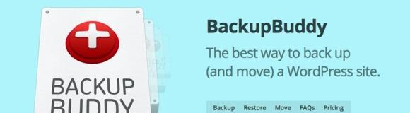 BackupBuddy - очень популярный плагин с широким набором инструментов