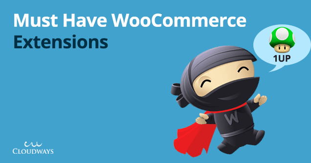 плагины расширения для WooСommerce интернет-магазина на WordPress