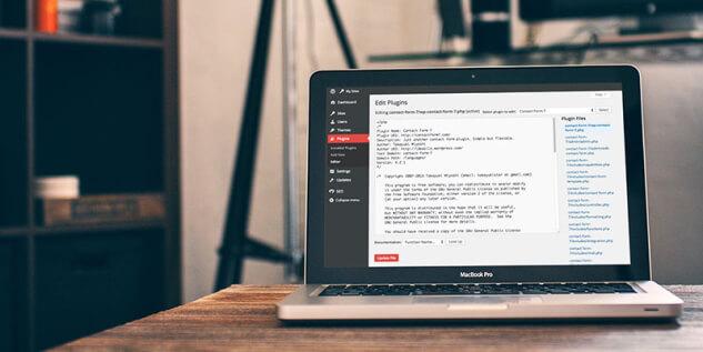 Файлы тем и плагинов доступны для редактирования