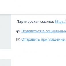 topvisor_3.jpg
