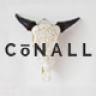 Conall – A Clean & Beautiful Multipurpose Theme