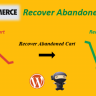 WooCommerce Recover Abandoned Cart CodeCanyon